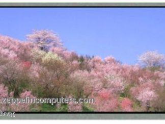 Samsung LT133X2-124 LCD 13.3